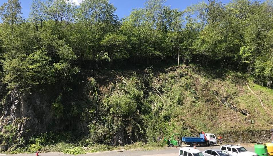 Imatge dels treballs de neteja de camins forestals a Aran.