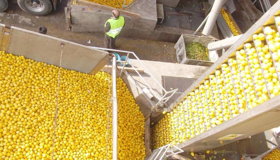 Imagen de Indulleida, la empresa de producción, entre otros, de zumos de frutas y verduras.