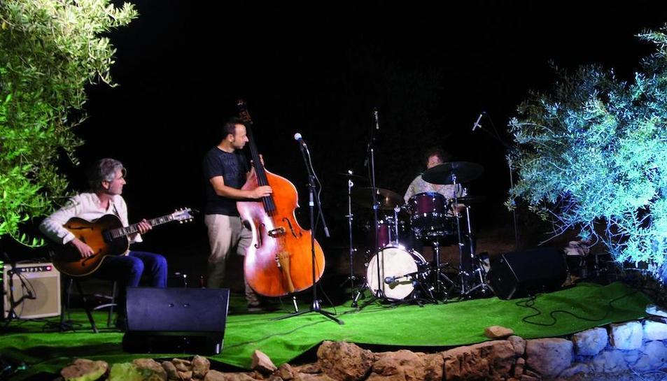Imatge del concert de jazz entre oliveres.