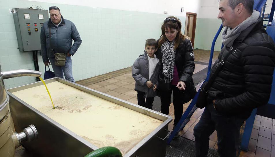 Imagen de archivo de una jornada de puertas abiertas en la cooperativa oleícola de Castelldans.