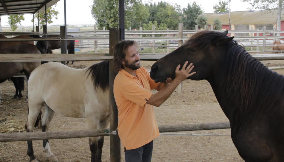 Carles Casanovas al costat d'alguns dels cavalls del club Hípica L'Arca, que participen en classes d'hípica i exercicis terapèutics.