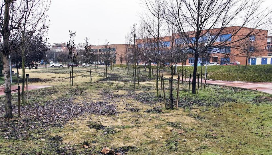 Imatge del parc de la Fonteta de Guissona.