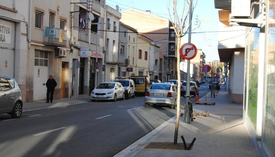 El nou arbratge a l'avinguda Catalunya.
