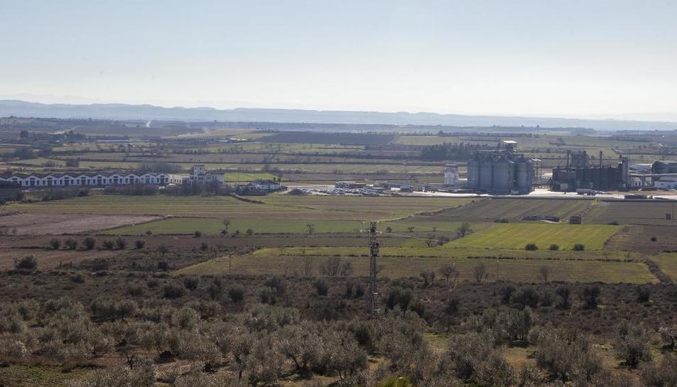 Els terrenys on es preveu construir la variant de Tàrrega.