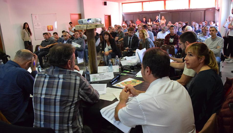 Un moment de la subhasta presidida per la consellera Jordà a l'ajuntament de Montferrer.