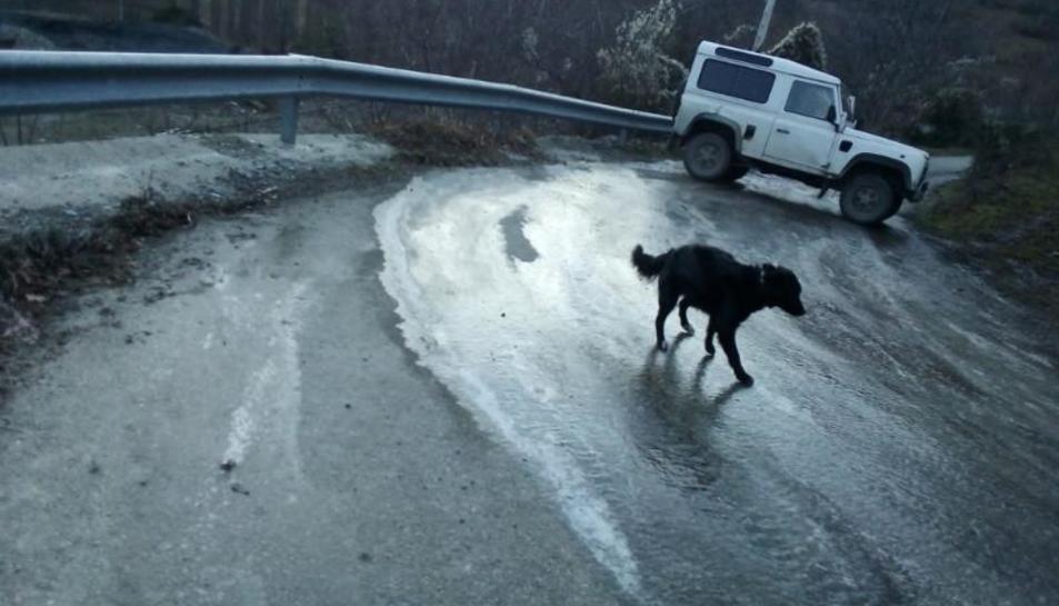 Veïns d'Anàs han de tirar sal a la carretera ells mateixos per gel