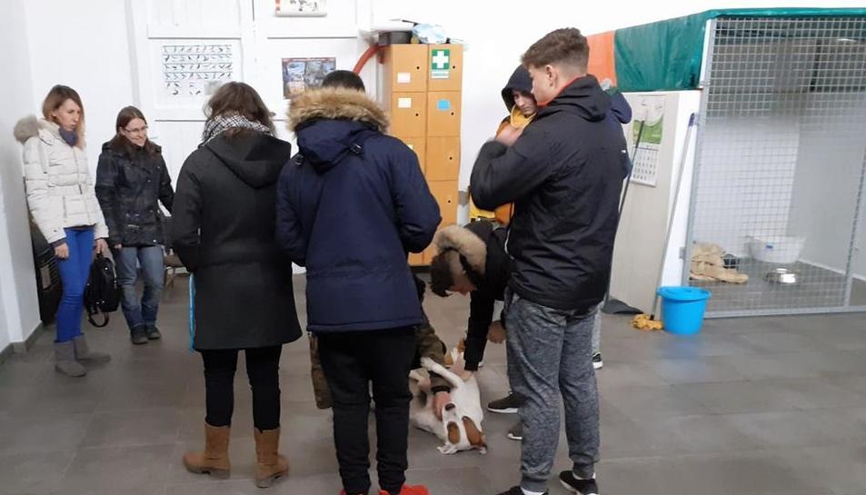 La visita de alumnos al refugio.
