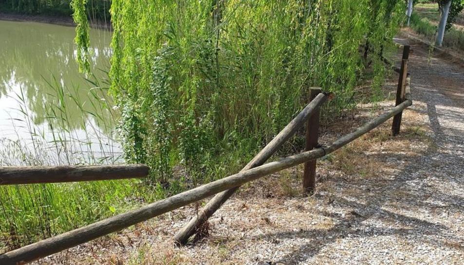Un tram de les baranes trencades o arrancades de la bassa.