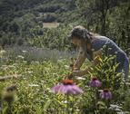 a mil metres d'alçada. Araós, a la Vall Farrera, és l'escenari del projecte de vida de la Gemma i el Pedro.