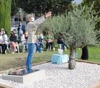Els participants en l'acte van penjar estels de fusta amb missatges a les branques de l'olivera.