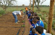 Alumnos de Vila-sana ejercen de jóvenes agricultores