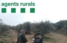 Agents rurals ja patrullen armats i amb armilles