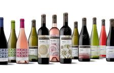 El celler Raimat classifica els seus vins segons la seua intensitat per ajudar el client