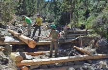 Més de 200 voluntaris per gestionar boscos al Sobirà
