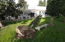 El viento derriba un árbol en el cementerio de Torrefarrera