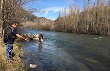 Un total de 454 permisos diaris en l'inici de la campanya de pesca a Lleida