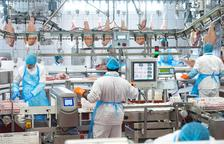 El beneficio de bonÀrea Corporación crece un 8% y supera los 47 millones