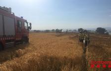 La Segarra y el Urgell, las zonas con más riesgo de incendios en la siega