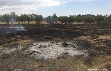 Denunciat per causar un foc d'1,4 hectàrees a Cervià de les Garrigues