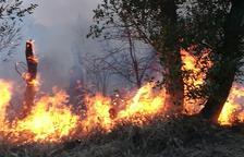 Arden nueve hectáreas en La Floresta y en la Mitjana