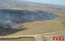 Fins a 70 hectàrees calcinades per un foc en camps agrícoles a Artesa de Lleida