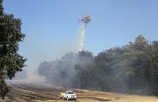 Cremen quaranta hectàrees a la Segarra i l'Anoia