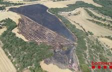 Quinze incendis calcinen en tan sols un mes 300 hectàrees de terrenys agrícoles a Ponent