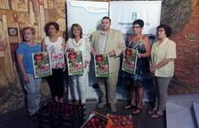 Rutes turístiques pels camps de fruita d'Aitona