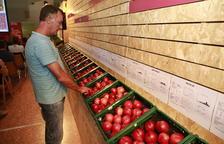 Protesta unitaria de los payeses de la fruta por la 'tiranía' de la distribución en los precios