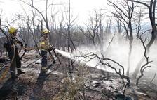 Un incendi destrueix 15 hectàrees de vegetació forestal i agrícola a Artesa de Segre