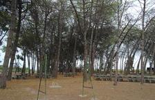 Queixes de veïns de Bell-lloc per l'abandó del parc de la Pineda