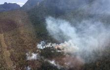 Un foc calcina vegetació en un bosc de Peramola
