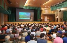 Lleida triplica desde 2007 las fincas de almendros en riego
