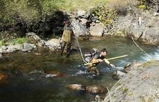 Aran repobla els seus rius amb truites autòctones