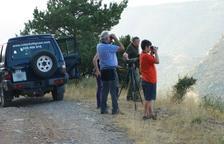 Augmenten els serveis de guia a la reserva de Boumort durant la brama