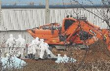 Corea del Sur sacrifica 201.000 aves para parar la propagación de gripe aviar