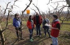 Aitona 'estrena' las rutas por los campos frutales