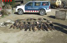 Desenes de pescadors obren la temporada a Lleida malgrat el fred