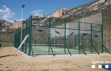 Pegatinas para evitar accidentes de pájaros en Vilanova de Meià