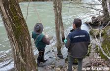Denunciats dos pescadors per diverses infraccions a la Noguera Pallaresa