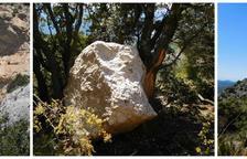 Una allau de roques talla un camí del Montsec