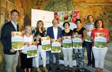 Recoger fruta, nuevo reclamo turístico en Lleida este verano
