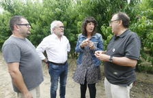 La consellera Jordà va visitar ahir un camp de platerina a Seròs.