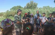 El Estany d'Ivars i Vila-sana recibe seis tortugas más