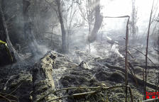 Arrasadas nueve hectáreas en dos incendios en la Segarra y en Aitona