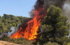 Incendi a les Garrigues per una crema agrícola no autoritzada