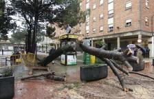 Efectos de una tormenta en Lleida la pasada primavera.