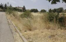 Medio centenar de actas por riesgo de fuego en una urbanización en Àger