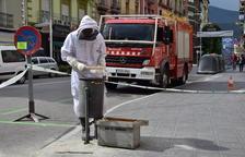 Retiren abelles de la capital de l'Alt Urgell
