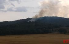 Los Bomberos extinguen un fuego de vegetación en Artesa de Segre